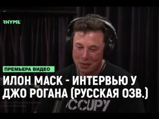 Илон Маск - Интервью у Джо Рогана (русская озвучка) [Рифмы и Панчи]