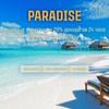 Paradise-invest