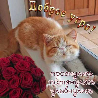 Ольга Токарева, Пенза