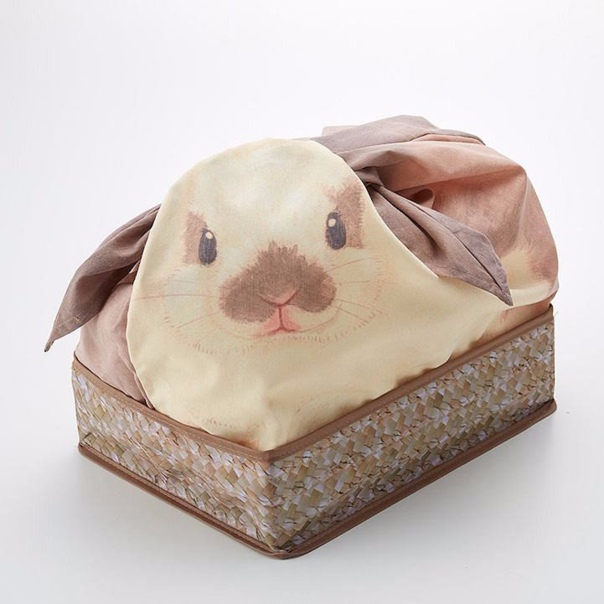 Прекрасный кролик, который спрячет все ненужное от посторонних...
