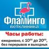 ФЛАМИНГО Ветеринарный центр