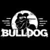"""Пейнтбол Клуб """"Бульдог""""// Paintball club Bulldog"""