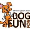 Позитивная дрессировка собак DogForFun