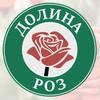 Доставка цветов Нижний Новгород Долина Роз