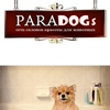 Стрижка собак кошек зоосалон PARADOGs