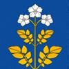 Администрация Фаленского муниципального округа