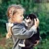 Хаски и маламуты в Томске :)