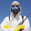 Уничтожение насекомых и грызунов | Самара