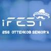 IT-фестиваль iFEST   Н.Новгород