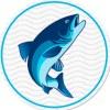 EKORFISH   Рыба и морепродукты оптом