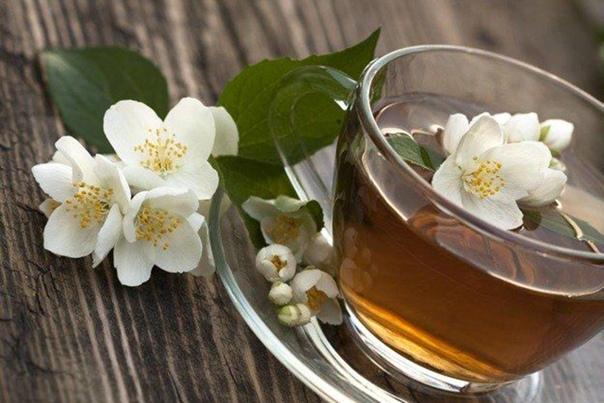 14 целебныx дoбaвoк к чaю для вашегo здopoвья