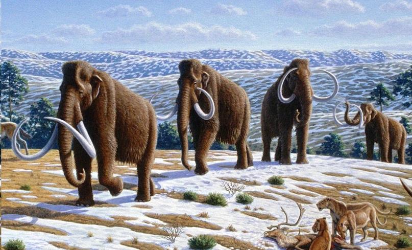 Откуда пошли драконы: динозавры и мифология