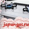 Газовое оборудование из Японии в Россию