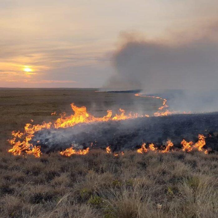 В Оренбуржье на территории двух муниципалитетов прогнозируется чрезвычайная пожарная опасность