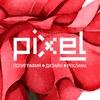 PIXEL - полиграфия, дизайн и реклама