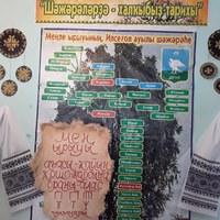 ИльчигуловскаяСельская-Библиотека