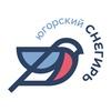 """Информационное агентство """"Югорский снегирь"""""""