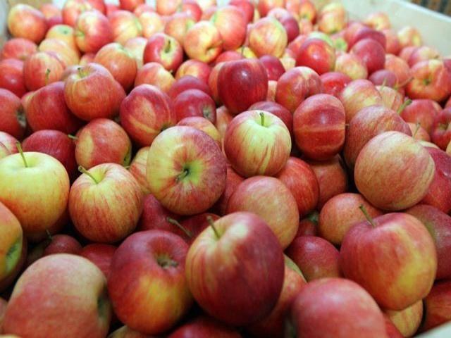 Польза яблок.