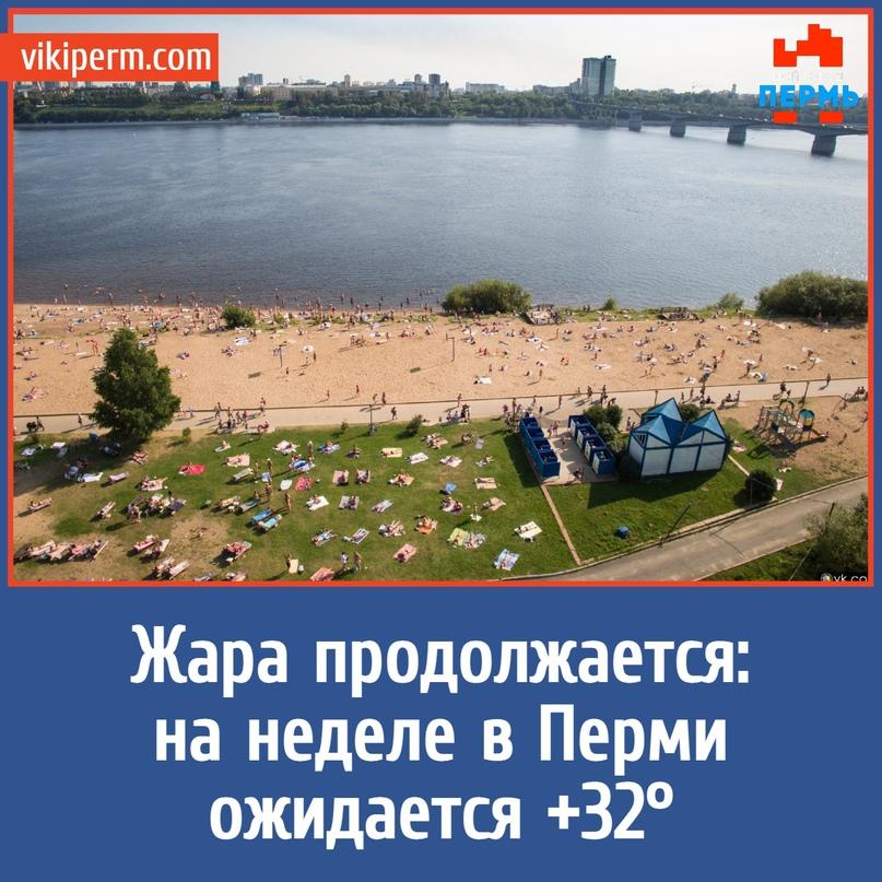 Жара продолжается: на неделе в Перми ожидается +32°