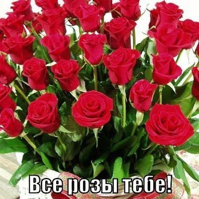 Люба Рябчикова, Бокситогорск
