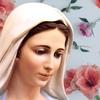 Католические трансляции «Радио Мария»
