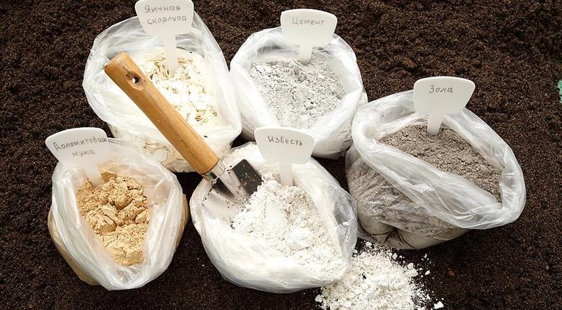 Как понизить кислотность почвы?