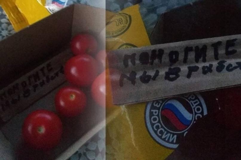 В упаковке томатов из новосибирского магазина была записка с просьбой спасти из рабства
