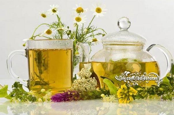 Чай для тех, кто следит за своим здоровьем
