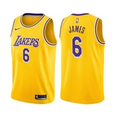 2021-22 Los Angeles Lakers LeBron James #6 Icon Edition Gold Jersey