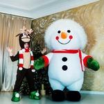 Снеговик 2.6. метра!