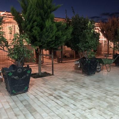Xəzri Kinoloji-Mərkəz, Баку