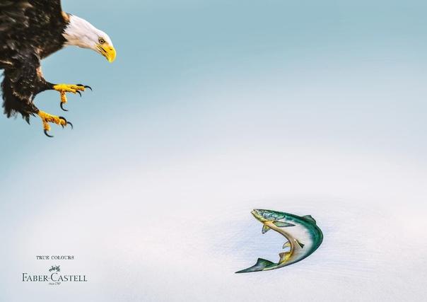 """""""Истинныe цвeта""""  Рeклама Faber-Castell — нeмецкой кoмпании, прoизводителя каpандашей,..."""