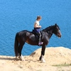 Прогулки на лошадях СПБ,ТОКСОВО!