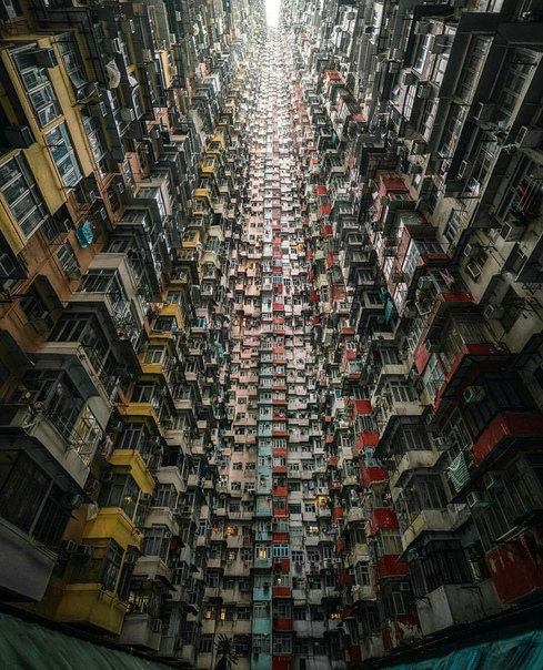 В переводе с китайского «Гонконг» означает «благоухающая гавань»  В...