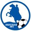 Мини-футбольная лига имени Алексея Степанова