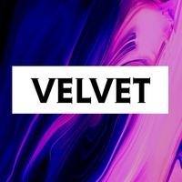 VelvetManagement