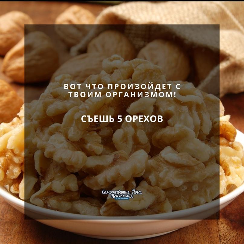 Грецкому ореху по праву присвоено звание суперпродукта. Витамины A, B1, В2, В12,...
