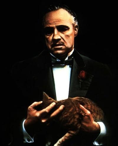 Don Corleone, Corleone