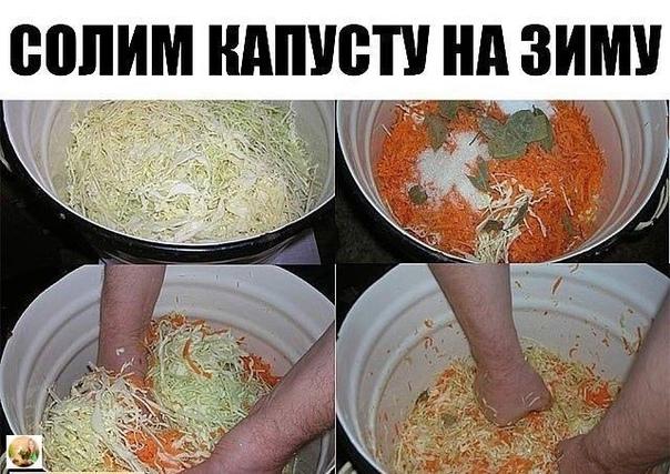 СОЛИМ КАПУСТУ НА ЗИМУ.