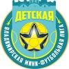 Детская Владимирская Мини-Футбольная Лига