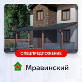 Проект DM-5 MRAVINSKY (МРАВИНСКИЙ)
