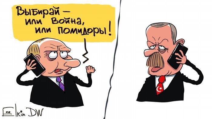 Турция считает нелегитимными проведенные в Крыму выборы в Госдуму - МИД Турции