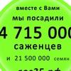 РОДНОЙ ЛЕС Общественное движение.