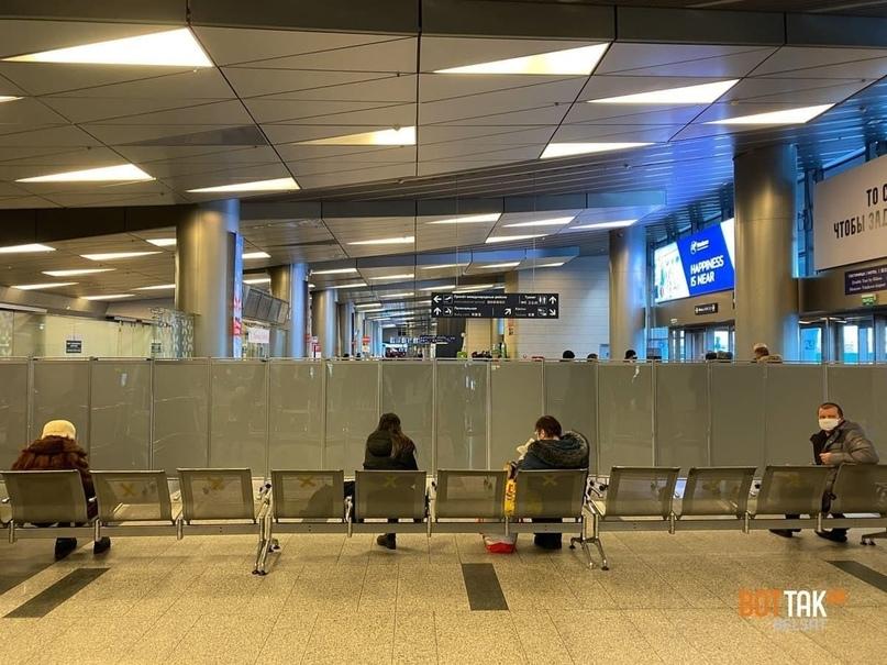 Фанаты Ольги Бузовой заполнили аэропорт «Внуково» в день прилета Алексея Навального