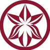 «ОРХИДЕЯ» СТОМАТОЛОГИЯ и КОСМЕТОЛОГИЯ в САМАРЕ