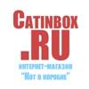 Кот в коробке. Товары для активного образа жизни