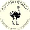 Doctor Ostrich