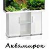 """Магазин """"Аквамирок"""" в Уфе, аквариум Уфа"""