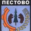 Дума Пестовского муниципального района