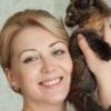 Мейн-куны. котята. Москва. Amazing Mirakl. ru